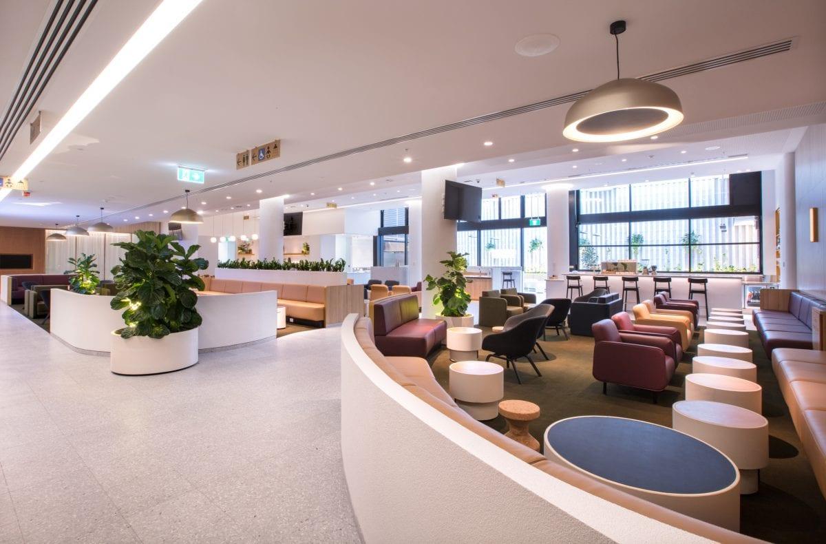 White concrete planters in the Qantas business class lounge - Concrete Studio